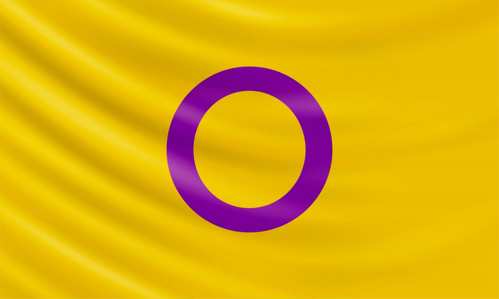 Yellow flag with a purple circle shape in the middle representing intersex people / people with variations in sex characteristics.