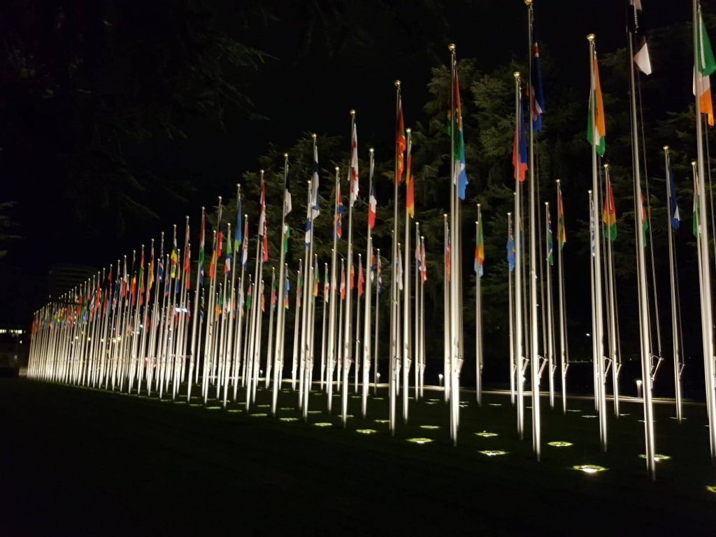 Many flags hanging from flagpoles grouped close together and lit by floodlights in the darkness